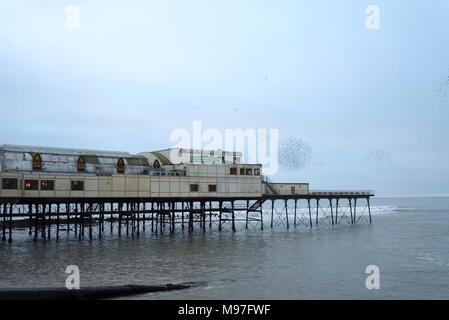 Starling Flocks over Aberystwyth Pier - Stock Photo