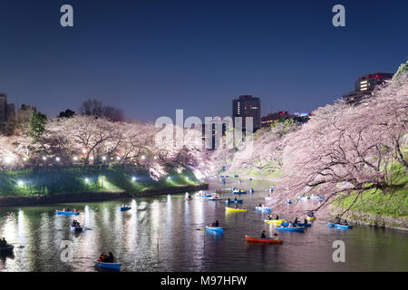 Night view of massive cherry blossoming with Tokyo city as background. Photoed at Chidorigafuchi, Tokyo, Japan. - Stock Photo