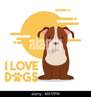 love dog pet - Stock Photo