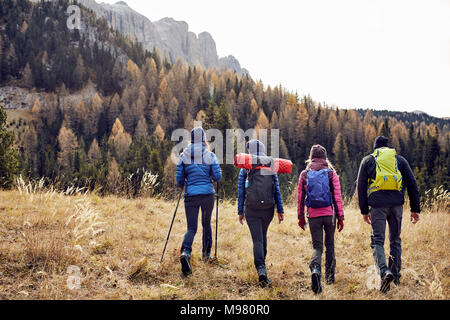 Group of friends hiking in the mountains - Stock Photo