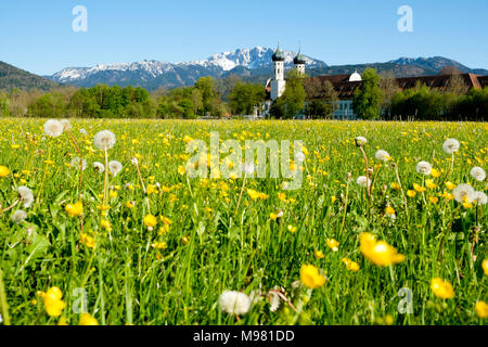 Kloster Benediktbeuern, hinten  Benediktenwand Oberbayern, Bayern, Deutschland, - Stock Photo