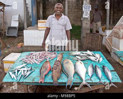 Local fish market in male maldives stock photo 56077824 for Local fish market