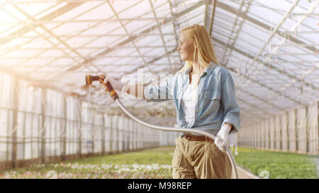 Happy Female Gardener Waters Plants and Flowers with a Hosepipe in Sunny Industrial Greenhouse. - Stock Photo