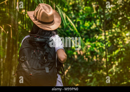 Woman tourist with hat and backpack standing in evergreen forest. Alone young woman traveller enjoy travel. - Stock Photo