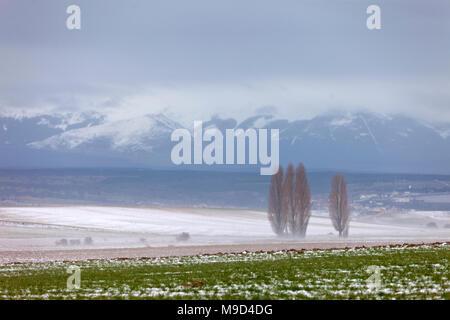 Winter in Castilla. Segovia landscape. Snow covered fields. - Stock Photo
