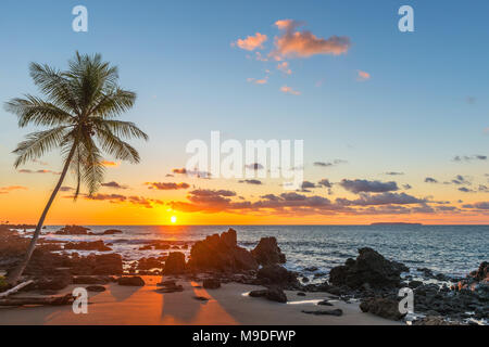 Silhouette of a tropical palm tree at sunset along the tranquil Pacific Ocean inside Corcovado national park, Osa Peninsula, Costa Rica. - Stock Photo