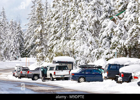 43,160.09727 winter snow-covered road, trees & parked vehicles - Stock Photo