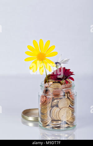 Money flowers in a glass jar full of euro coins on white background. - Stock Photo