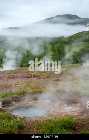 View of a Meadow with Steaming Hot Springs, Haukadalur Valley, Southern Iceland - Stock Photo