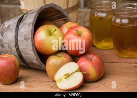 Farm to pie! Pick your apples, put them in a basket (or wooden bushel pail) and press, peel, enjoy freshly picked fruit - Stock Photo