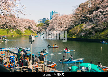 People gather to get on boats to row on the moat around the Imperial Palace in Tokyo, Japan to view the cherry blossoms as they near full bloom - Stock Photo