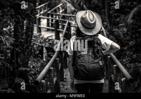 Black and white photo of Asian woman tourist with hat and backpack standing and start walking on nature trail bridge in evergreen forest. Alone young  - Stock Photo
