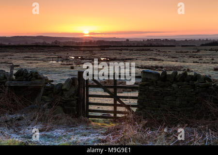 Marwood, Teesdale, County Durham, UK.  Monday 26th March 2018. UK Weather. With overnight temperatures dropping to minus 3 it was a cold and frosty start to the day as the sun rose in County Durham. David Forster/Alamy Live News - Stock Photo