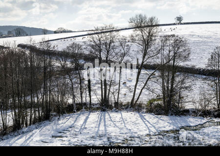 Rural business in snow near Dunsford,Dartmoor National Park,Teign Valley,Devon,edge, border, margin, side, brink, rim, lip, limit, boundary, outskirts - Stock Photo