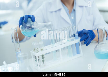 Experienced scientist making an important experiment - Stock Photo