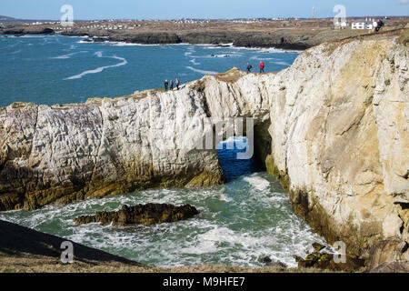 Hikers walking on Bwa Gwyn or White Arch rock formation on Isle of Anglesey Coastal Path on seacliffs in Penrhyn Bay. Rhoscolyn Anglesey Wales UK - Stock Photo