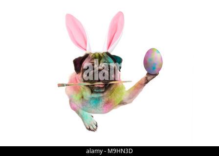 colorful easter pug dog bunny painting easter eggs, holding paintbrush, isolated on white background - Stock Photo