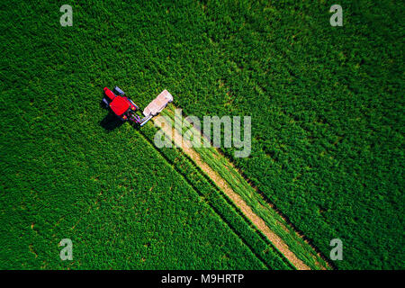 Tractor mowing green field, aerial view. - Stock Photo