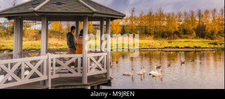 Family feeding the birds from a gazebo, autumn Kopavogur, Iceland. - Stock Photo