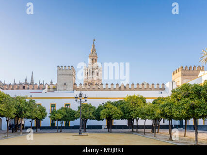 Patio de Banderas plaza/courtyard/square in the historic city centre of Seville with the Giralda bell tower in the background 2018, Andalusia, Spain - Stock Photo