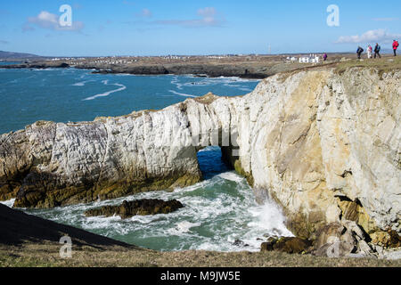 Bwa Gwyn or White Arch natural rock formation on Isle of Anglesey Coast Path on seacliffs in Geopark. Rhoscolyn Holy Island Anglesey north Wales UK - Stock Photo