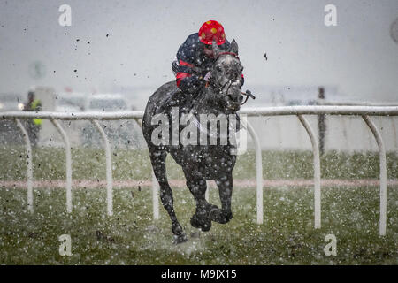Uttoxeter Racecourse - Midlands Grand National Day 2018 - Stock Photo