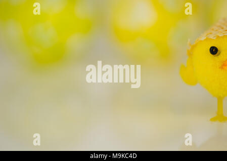 Yellow Easter chick on a reflective white with painted eggs