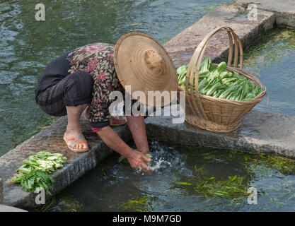 Woman farmer washing vegetables in a river in a village in Yunnan province,China - Stock Photo