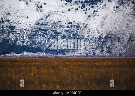 Golden Valley Meets Blue Snow Covered Mountains - Stock Photo