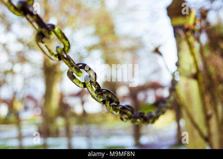 Closeup of chain links used to lock up a gate in the park. Closeup of chain. - Stock Photo