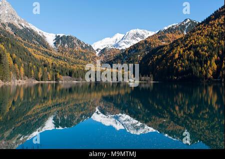Mountain lake with European larch (Larix decidua) in autumn, Lake Antholz, Lago di Anterselva, Rieserferner Group, - Stock Photo