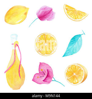Hand drawn watercolor set of lemon fruit, olive oil, leaf and bouganvillea flower on white background. Can be used for printing and decoration. - Stock Photo