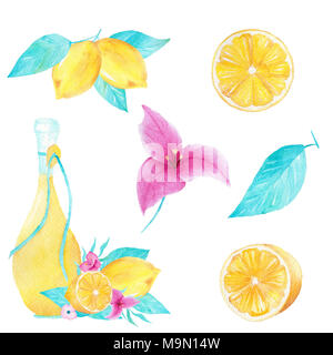 Hand drawn watercolor set of lemon, olive oil, leaf and bouganvillea flower on white background. Can be used for printing, decoration, invitation. - Stock Photo