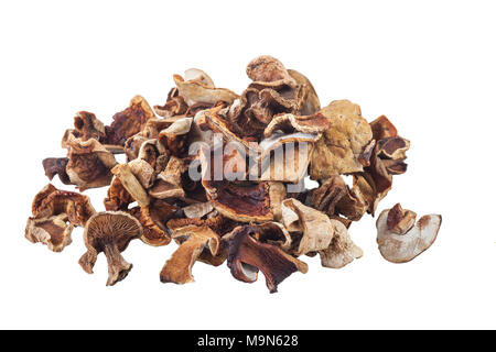dried mushrooms isolated on white background - Stock Photo