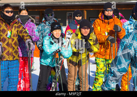 A group of young Koreans at the Alpensia resort in South Korea. Traditionally skiers dress in bright colored ski suits.  The Alpensia Resort is a ski resort and a tourist attraction. It is located on the territory of the township of Daegwallyeong-myeon, in the county of Pyeongchang, hosting the Winter Olympics in February 2018.  The ski resort is approximately 2.5 hours from Seoul or Incheon Airport by car, predominantly all motorway.   Alpensia has six slopes for skiing and snowboarding, with runs up to 1.4 km (0.87 mi) long, for beginners and advanced skiers, and an area reserved for - Stock Photo