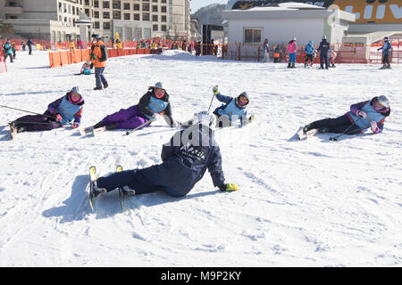 Four women are being taught how to stand up after falling while skiing, in the Alpensia resort in the Gangwon-do region of South Korea.  The Alpensia Resort is a ski resort and a tourist attraction. It is located on the territory of the township of Daegwallyeong-myeon, in the county of Pyeongchang, hosting the Winter Olympics in February 2018.  The ski resort is approximately 2.5 hours from Seoul or Incheon Airport by car, predominantly all motorway.   Alpensia has six slopes for skiing and snowboarding, with runs up to 1.4 km (0.87 mi) long, for beginners and advanced skiers, and an area - Stock Photo