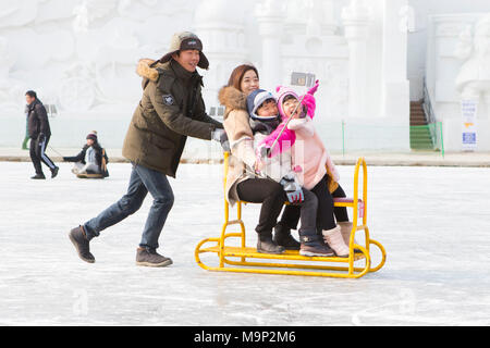 An Asian looking family is having fun taking a selfie on a group sled at the frozen river at the Hwacheon Sancheoneo Ice Festival.  The Hwacheon Sancheoneo Ice Festival is a tradition for Korean people. Every year in January crowds gather at the frozen river to celebrate the cold and snow of winter. Main attraction is ice fishing. Young and old wait patiently over a small hole in the ice for a trout to bite. In tents they can get the fish grilled after which they are eaten. Among other activities are sledding and ice skating.  The nearby Pyeongchang region will host the Winter Olympics in - Stock Photo