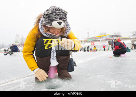 A warmly dressed woman is trying to catch a fish at a frozen river.  The Hwacheon Sancheoneo Ice Festival is a tradition for Korean people. Every year in January crowds gather at the frozen river to celebrate the cold and snow of winter. Main attraction is ice fishing. Young and old wait patiently over a small hole in the ice for a trout to bite. In tents they can let the fish grilled after which they are eaten. Among other activities are sledding and ice skating.  The nearby Pyeongchang region will host the Winter Olympics in February 2018. - Stock Photo
