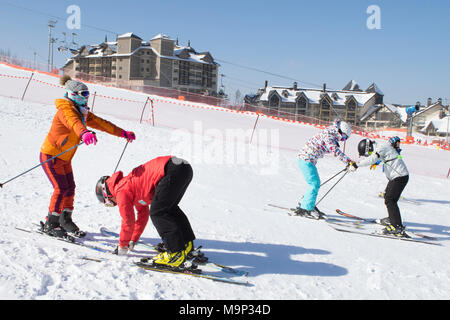 Two women are being taught how to ski on a mellow ski slope of the Alpensia resort in the Gangwon-do region of South Korea.  The Alpensia Resort is a ski resort and a tourist attraction. It is located on the territory of the township of Daegwallyeong-myeon, in the county of Pyeongchang, hosting the Winter Olympics in February 2018.  The ski resort is approximately 2.5 hours from Seoul or Incheon Airport by car, predominantly all motorway.   Alpensia has six slopes for skiing and snowboarding, with runs up to 1.4 km (0.87 mi) long, for beginners and advanced skiers, and an area reserved for - Stock Photo
