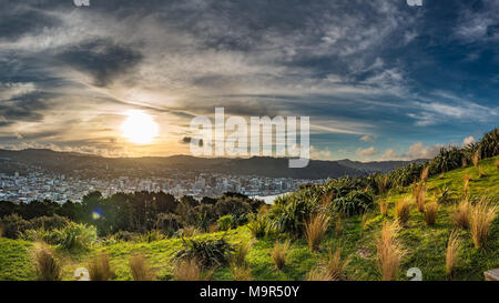 View of downtown Wellington New Zealand from Mount Victoria Lookout during sunset - Stock Photo