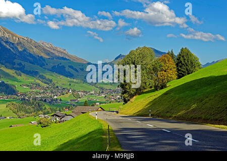 Europe, Switzerland, Vaud (Vaud), Château-d'Oex, route of the Mosses, nightmare scenery, place of interest, tourism, traditionally, trees, wood, plant - Stock Photo