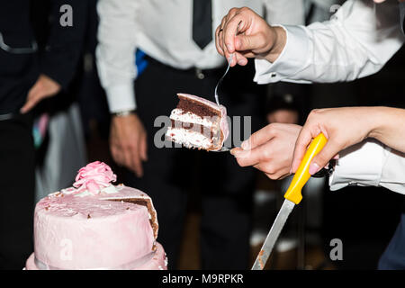 Bride and groom cut wedding cake near guests - Stock Photo