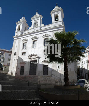 San Miguel church behind a palm tree and cobblestone streets in Alfama disctrict, the most famous and ancient typical neighborhood of Lisbon. Portugal - Stock Photo