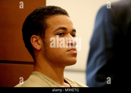 Fort Lauderdale, FL, USA. 29th Mar, 2018. Zachary Cruz, 18, brother of the teenager who killed 17 people at Marjory Stoneman Douglas last month, appears in Broward court for a bond hearing. Cruz will go free as part of a plea deal reached in his trespassing case. He pleaded no contest Credit: Sun-Sentinel/ZUMA Wire/Alamy Live News - Stock Photo