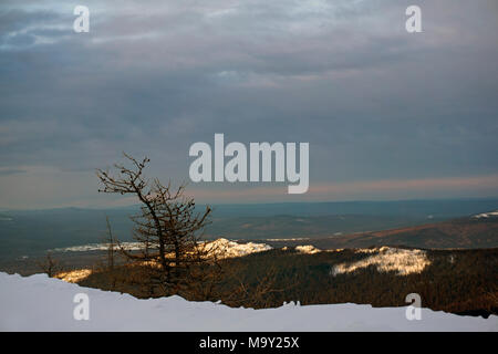 sunrise on the northern urals in cloudy weather; view of the sunlit wooded hills from slope overgrown with larch - Stock Photo