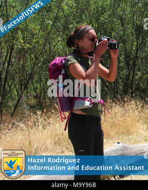 Faces of USFWS Hazel Rodriguez, Information and Education Assistant. What led you to a career with the U.S. Fish and Wildlife Service? While I was in college, I worked seasonally for various government agencies during my summer breaks. My time with the National Park Service was the most inspiring, as I found my sense of wonder working at Lassen Volcanic National Park. I knew I wanted to continue work in public service, and be a part of an organization that really makes a difference. The U.S. Fish and Wildlife Service fits the bill.  Where did you go to school and what did you study? I am a lit - Stock Photo