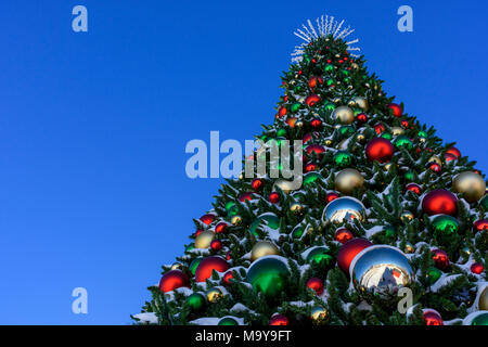 Large outdoor Christmas Tree with fresh snow in town park, Castle Rock Colorado US. - Stock Photo