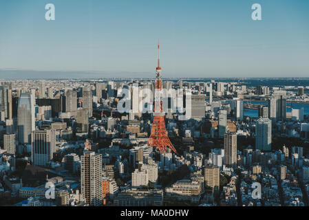 Tokyo skyline and buildings from above, view of the Tokyo tower - Stock Photo