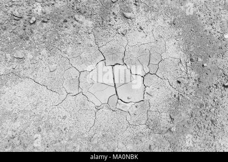 Stones and dry and cracked soil ground during drought, viewed from above in black and white. - Stock Photo