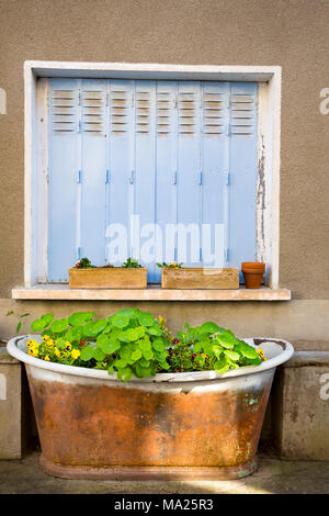 A closed window and flowers in an old bath tub in the town of Tournon-d'Agenais, situated in the Lot-et-Garonne, Aquitaine region, in the south-west o - Stock Photo